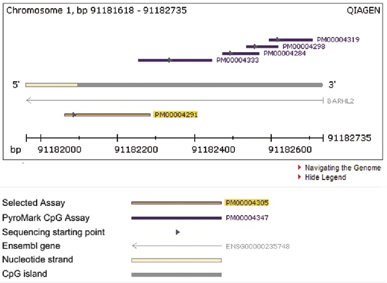Ready-to-use methylation assays.